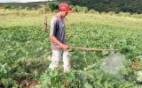 Multinacionais do agrotóxico podem pagar multa de mais de R$ 50 milhões